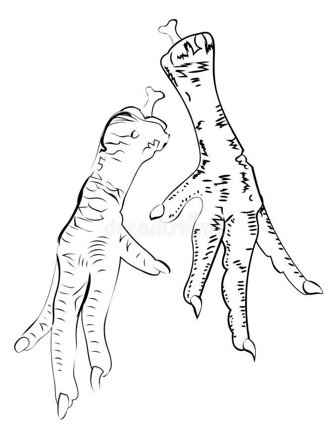 Kurczaków cieki ilustracyjni ilustracji