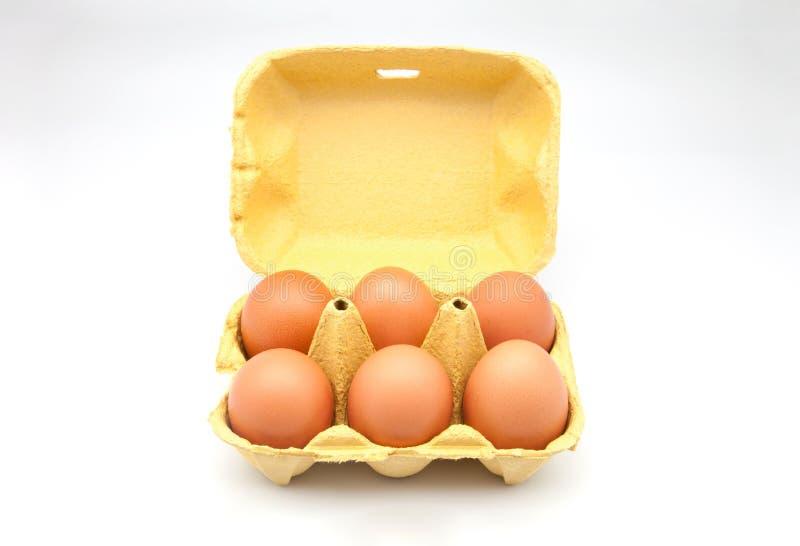 Kurczaków jajka zdjęcia royalty free