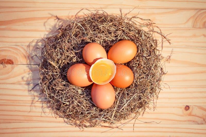 Kurczaków jajka w gniazdeczku na drewnianym, Odgórnym widoku, zdjęcie royalty free