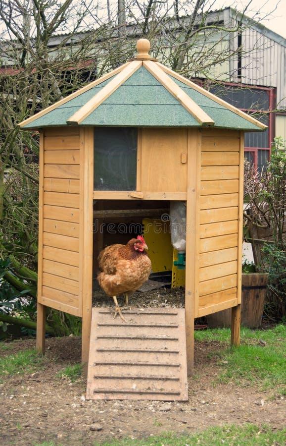 Kurczak klatka obraz stock