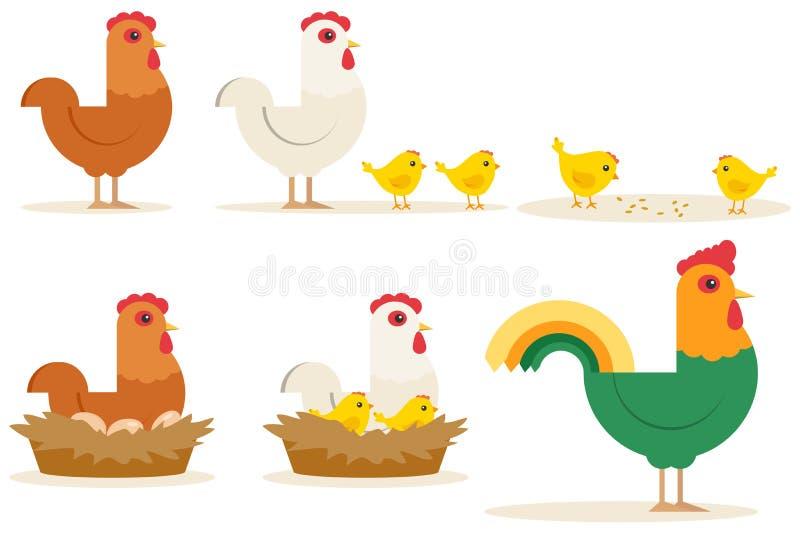 Kurczak kreskówki charakteru pisklęca karmazynka i kogut Wektorowy ustawiający śliczni kurczaki na białym tle royalty ilustracja