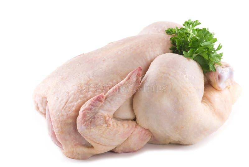 kurczak surowy obrazy stock
