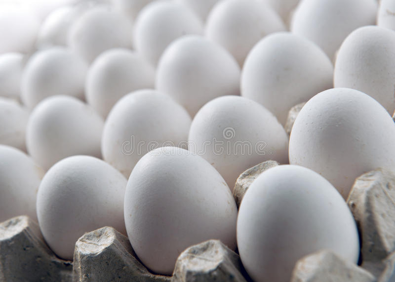 Kurczaka biały jajko w kaseta kartonu lub tacy pudełku zdjęcia stock