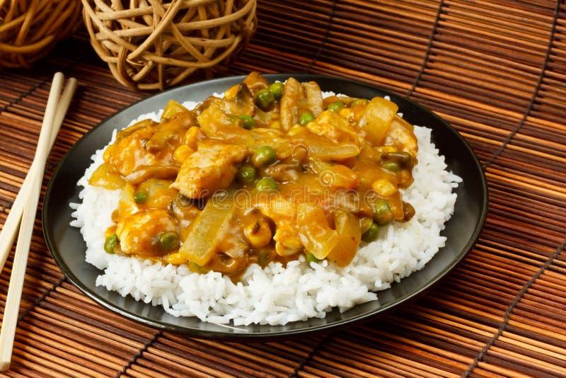 Kurczaka Curry fotografia royalty free