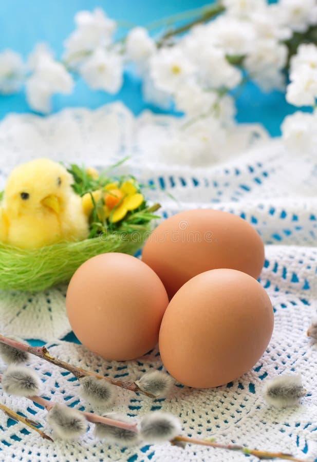 kurczaka Easter jajka fotografia royalty free
