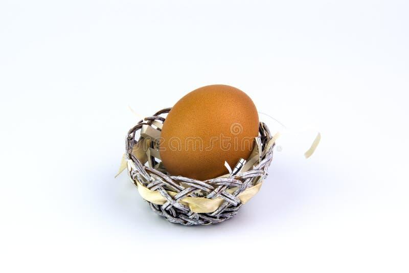 Kurczaka jajko w koszu na białym tle obraz royalty free