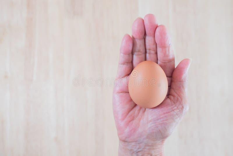 Kurczaka królik w koszu i jajko Wielkanocny czas, Szczęśliwy czas Jezusowy wzrost znowu obraz stock