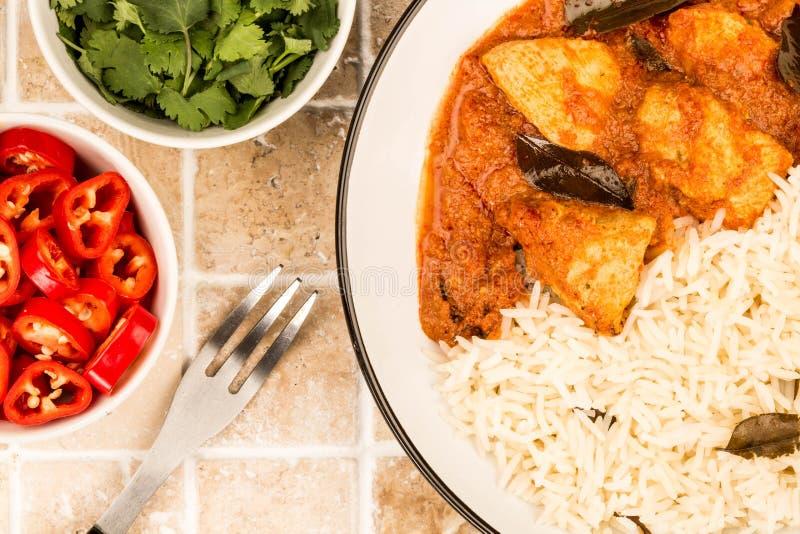 Kurczaka Madras curry I Basmati Rice obraz royalty free