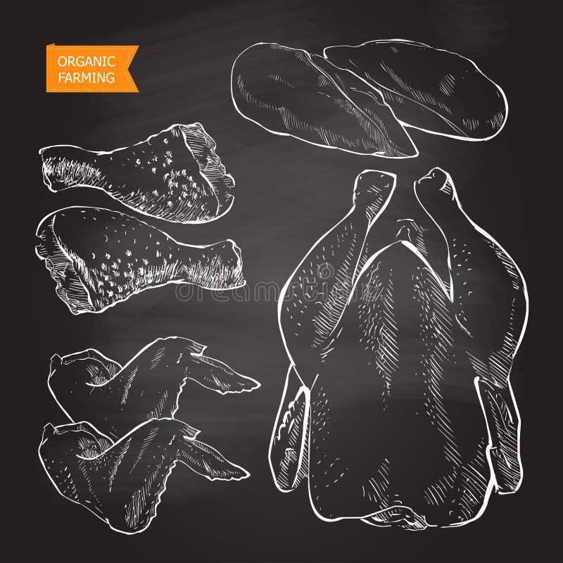 Kurczaka mięsa wektor ilustracji