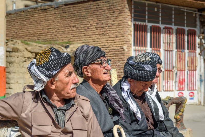 Kurdish men in Darreh Tafi village near Zarivar lake, Marivan, Iran royalty free stock photography