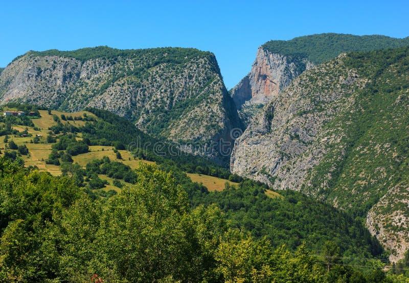 Kure gór park narodowy obraz royalty free