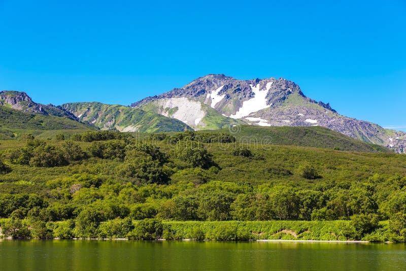 Kurile See, Wald und die Hügel Süd-Kamchatka lizenzfreies stockfoto