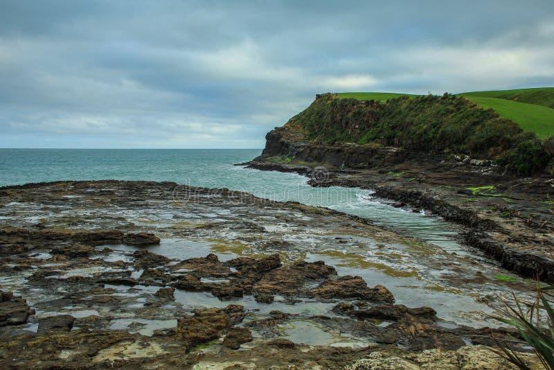 Kuriositäts-Bucht in Süden, Ansicht über alten versteinerten Wald beim Catlins, Südinsel, Neuseeland stockfoto