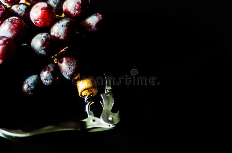 Kurketrekker met cork op slak naast groot rode druivenfruit op bla royalty-vrije stock fotografie