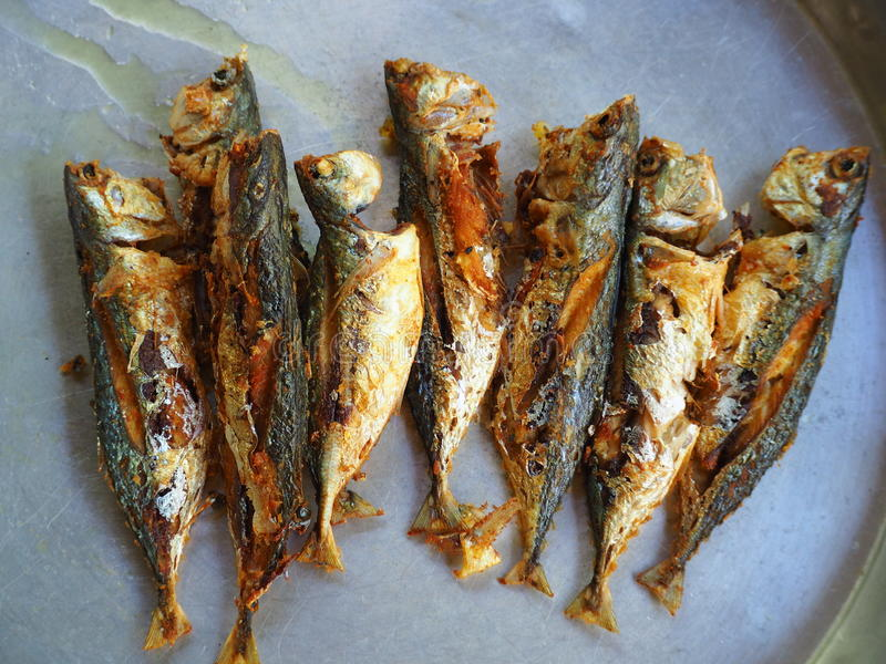 Kurkuma gebraden makreel stock foto's