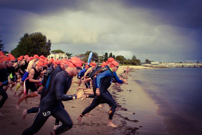 Kurnell Triathlonserie royaltyfria foton