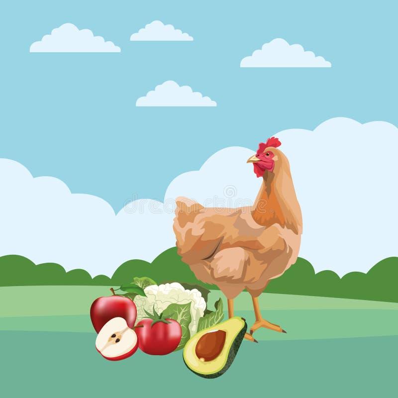 Kurny owoc i warzywo ilustracja wektor