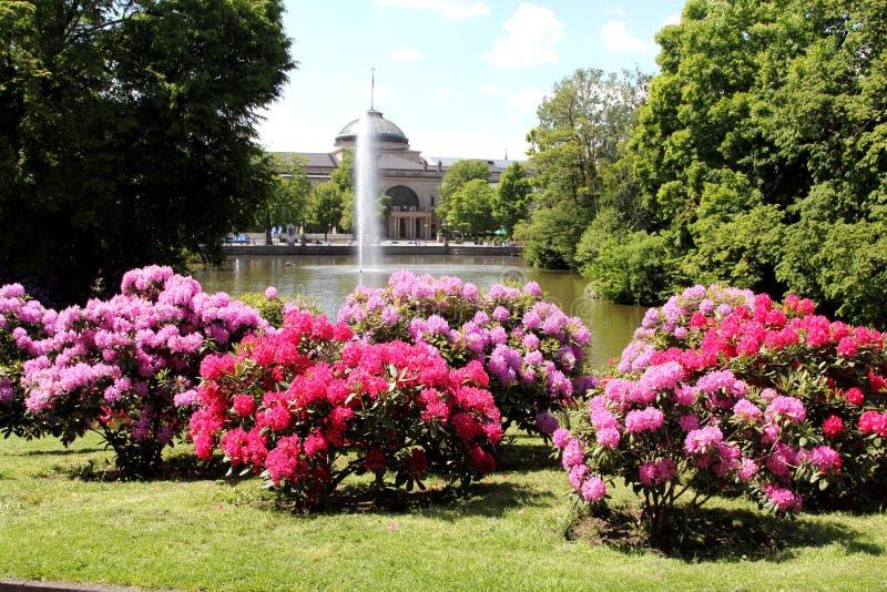 Kurpark a Wiesbaden immagine stock libera da diritti