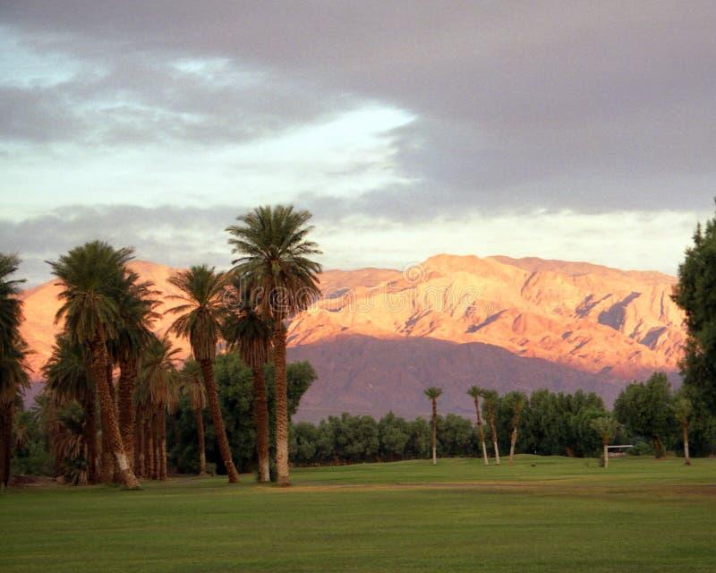 kurs golfa pustyni obraz royalty free