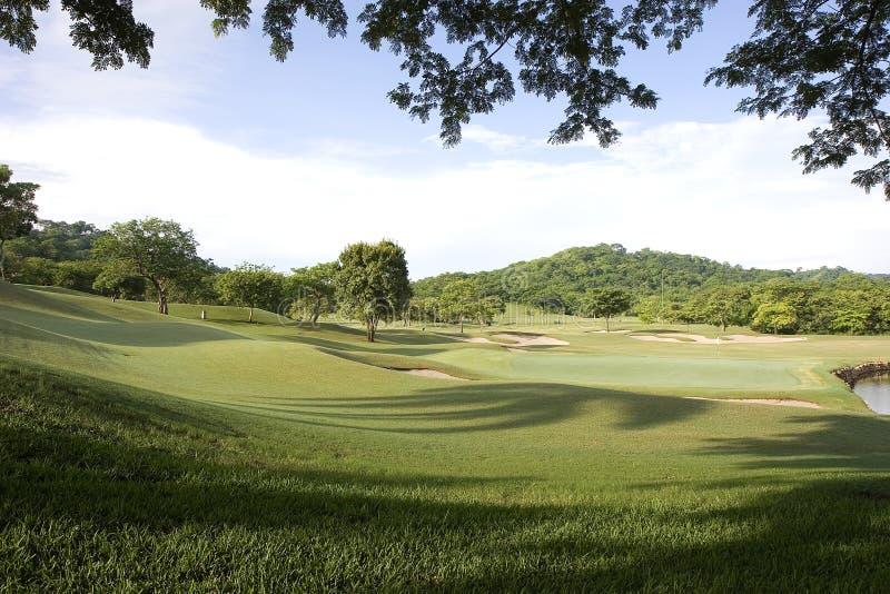 kurs golfowa dżungli obrazy royalty free