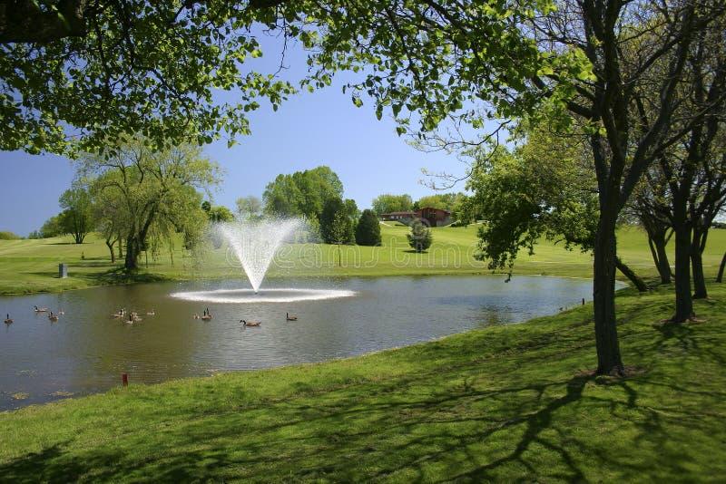 kursowy golfowy widok obrazy royalty free
