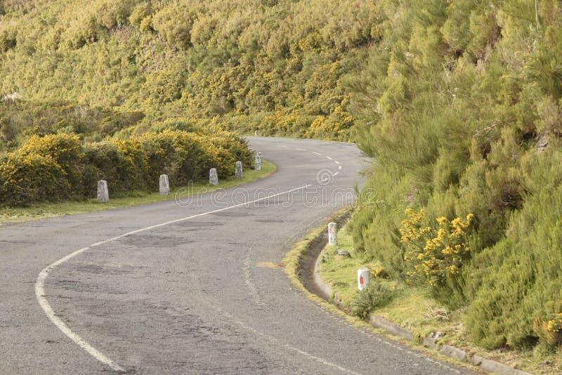 Kurven-alte Straße in tha Berg stockbilder