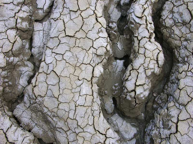Kurven in der Wüste lizenzfreie stockbilder