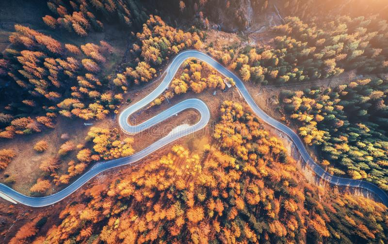 Kurvenreiche Straße im Herbstwald bei Sonnenuntergang in den Bergen Antenne konkurrieren lizenzfreie stockfotografie