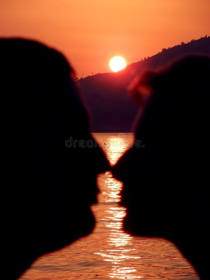 Kus in de zonsondergangbezinning over gouden overzees stock fotografie