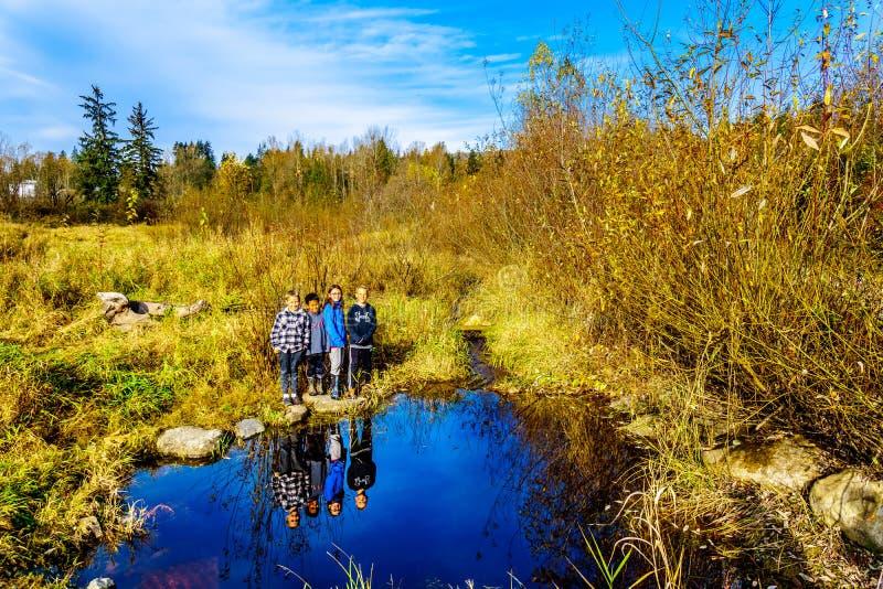 Kusiner som tycker om en vandring på slingorna av Silverdale liten vikvåtmarker nära beskickningen British Columbia, Kanada arkivfoto