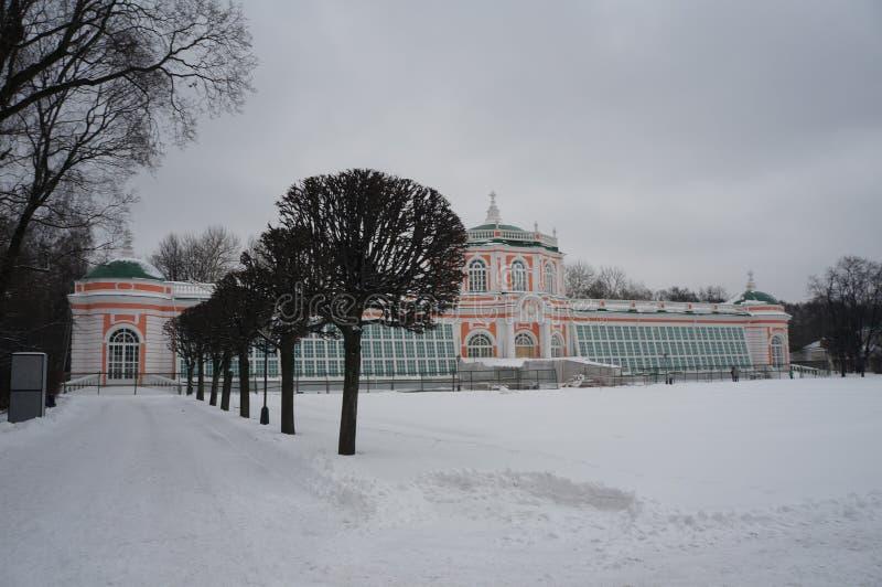 Kuskovo park w Moskwa Śnieżna zima zdjęcie royalty free