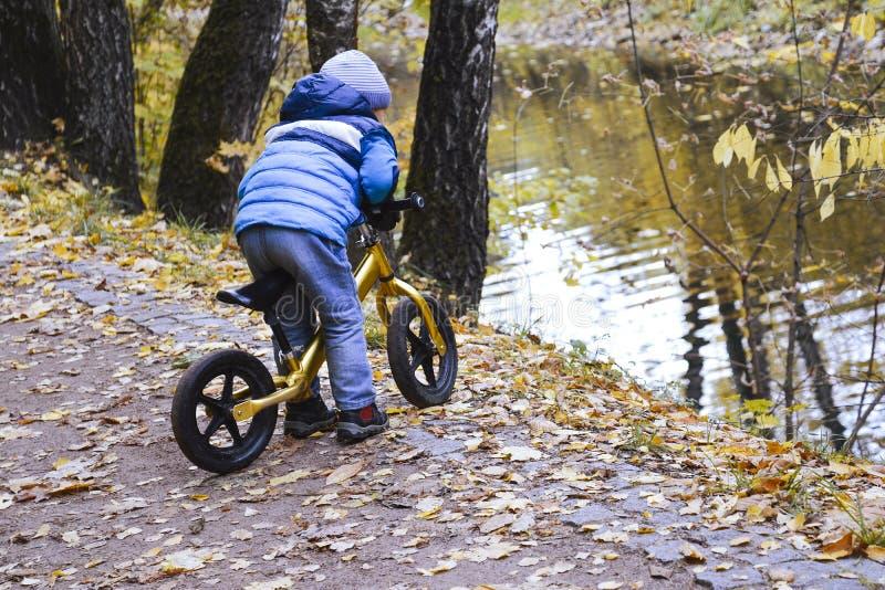 Kuskovskypark moskou 14 10 2018 De herfst Actieve familiegangen met kinderen in het park stock afbeelding