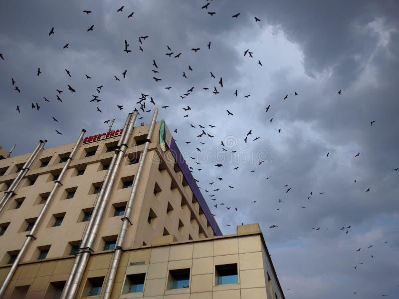 Kusligt sjukhus arkivbild