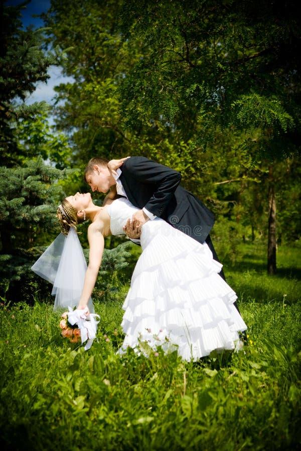 Kuss der Braut und des Bräutigams lizenzfreie stockfotografie
