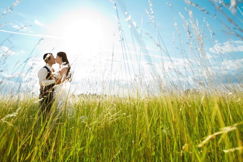 Kussende bruid en bruidegom in zonnig gras royalty-vrije stock afbeelding