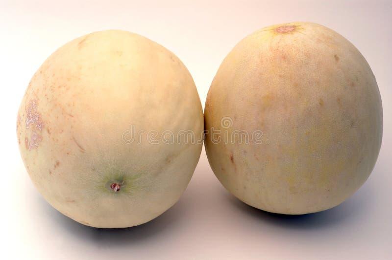 Kussende meloenen stock afbeelding