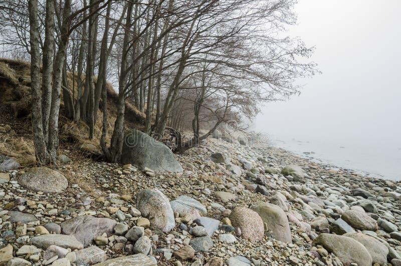 Kust av det baltiska havet i en dimma royaltyfria bilder