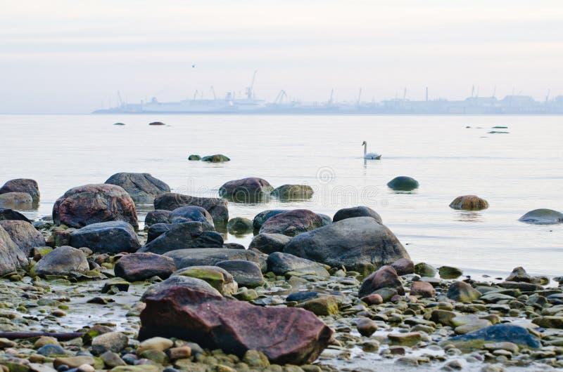 Kust av det baltiska havet tidigt på morgonen arkivfoto