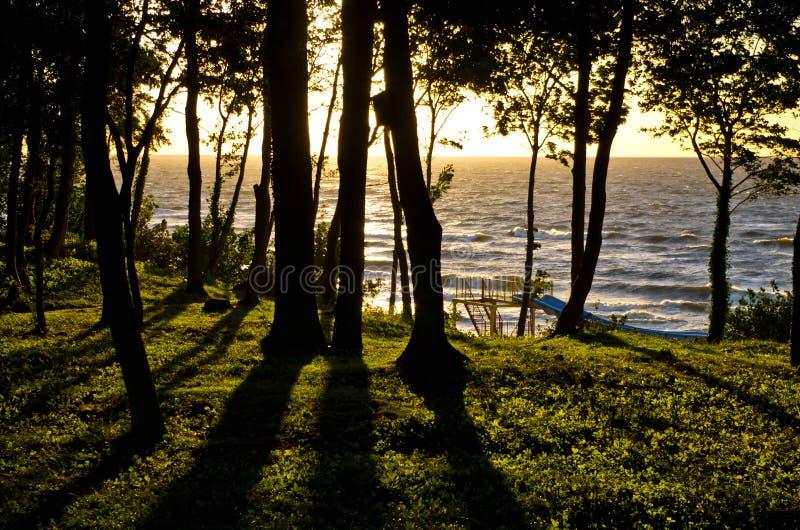 Kust av det baltiska havet under solnedgången fotografering för bildbyråer