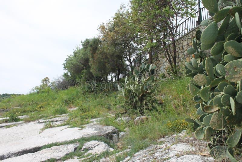 Kust av Kassiopi, Grekland arkivbilder