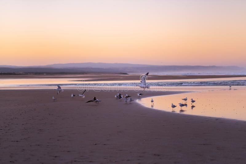 Kust av Sidi Kaouki, Marocko, Afrika skjuten solnedgångtid för exponering long Marockos fantastiskt bränningstad royaltyfria foton