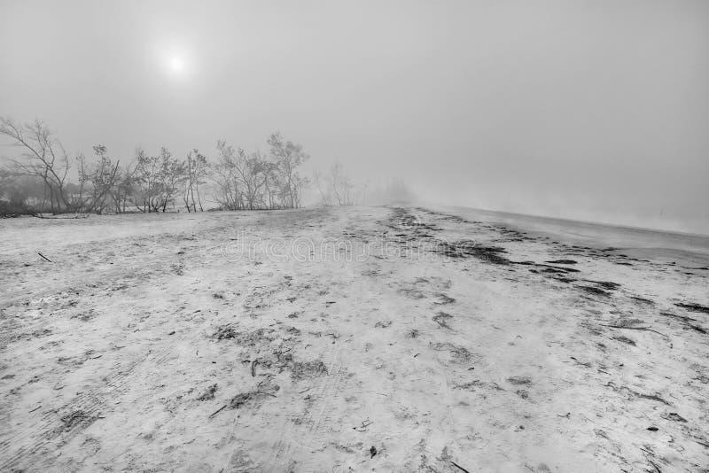 Kust- dimma som är svartvit royaltyfri bild