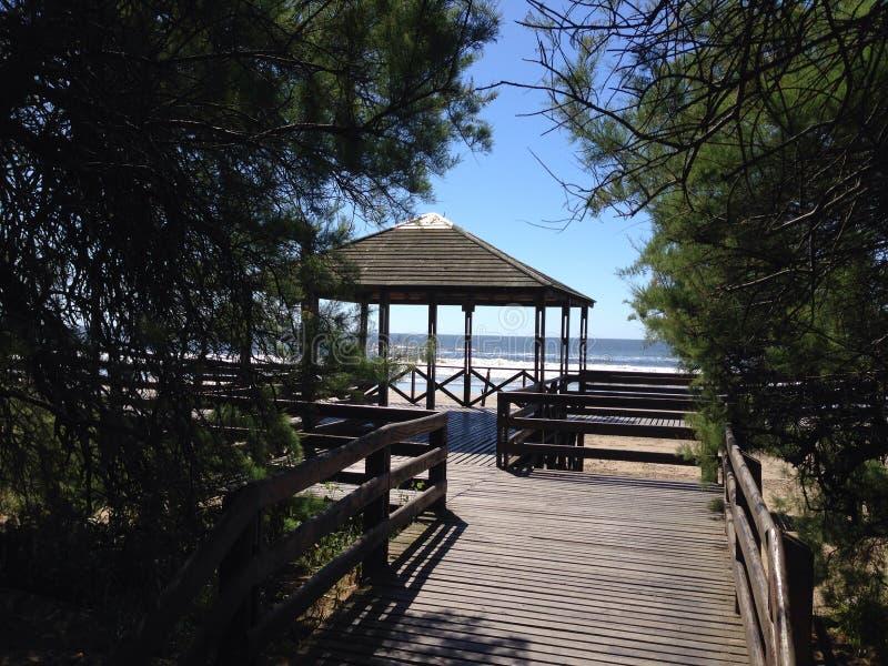 Kust en strand, Santa Teresita in Argentinië royalty-vrije stock afbeeldingen