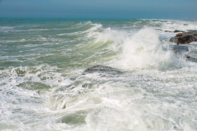 kust för caspian hav royaltyfria foton
