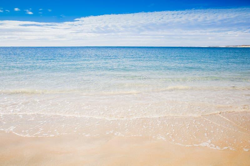 Kust för hav för Ningaloo härlig australisk sommarstrand royaltyfri bild
