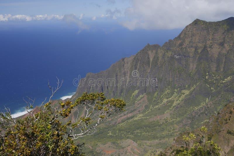 Kust för Na Pali - Kauai, Hawaii arkivbilder