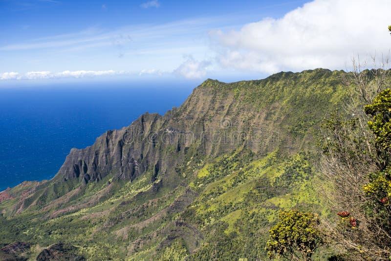Kust för Na Pali - Kauai, Hawaii - berg och hav royaltyfria foton