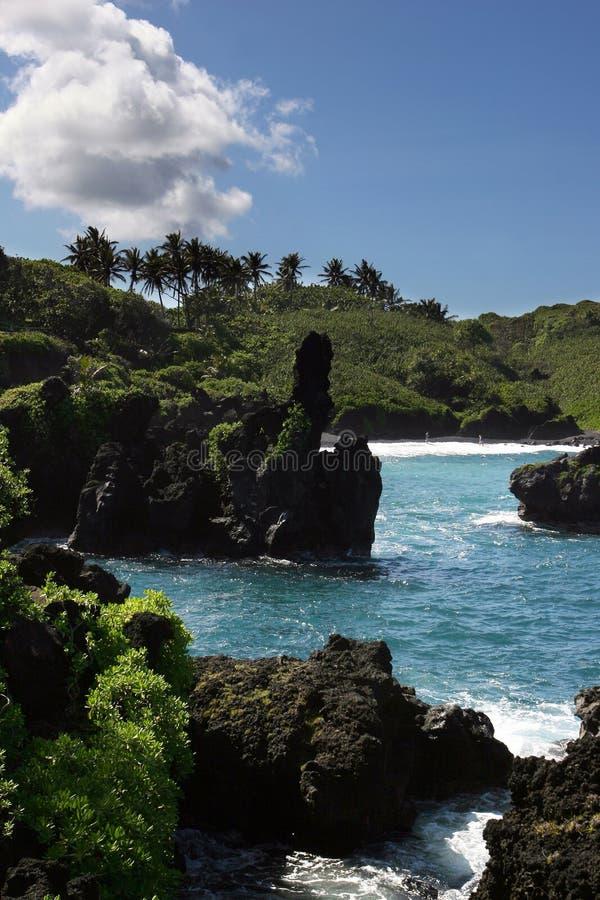 kust- hawaianskt landskap fotografering för bildbyråer