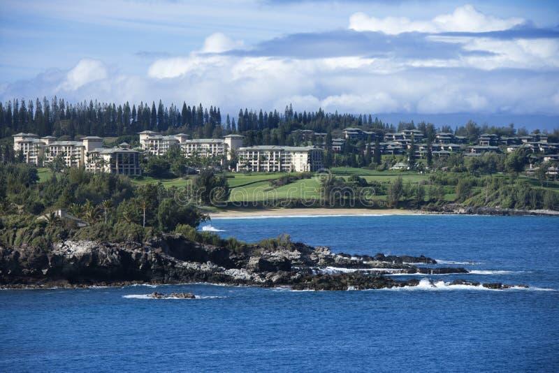 kust hawaii honolulu arkivfoton