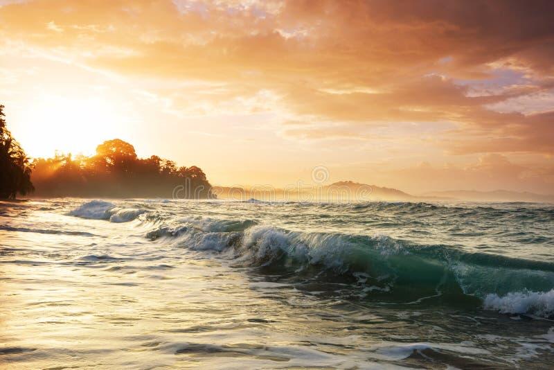 Kust i Costa Rica arkivfoto